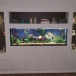 Wall unit Aquarium Brookvale